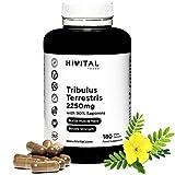 Tribulus Terrestris 2250 mg   180 vegane Kapseln   100% natürlich mit 90% Saponinen   Erhöht Testosteron, Muskelmasse, Kraft, Ausdauer und Energie und hilft bei der Muskelregeneration