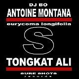 Tongkat Ali (Rockstarzz Remix)