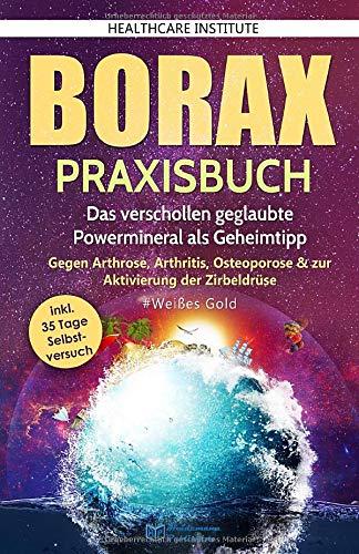 Borax: Praxisbuch - Das verschollen geglaubte...